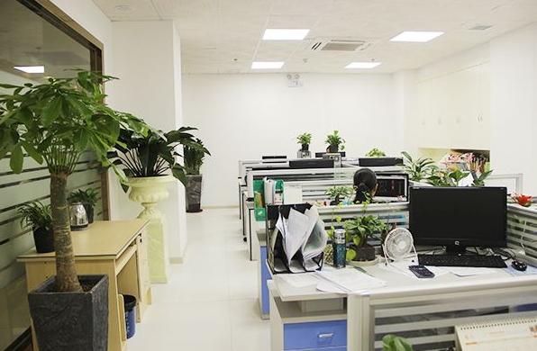 怎么样提升办公室的风水运势?